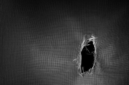 Screen Enclosure Repair – DIY or Hire a Professional